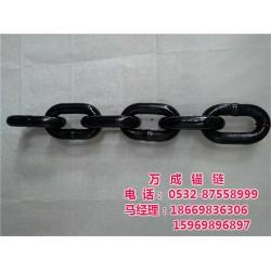 链条 青岛万成锚链(在线咨询) 不锈钢工业链