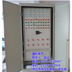 广西配电柜公司_配电柜安装公司_国能电气(