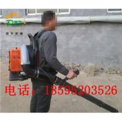 汽油手推式扬雪机 省人工吹雪机 乡村道路扫