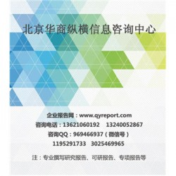 天然皮革手提包市场规划|天然皮革手提包市