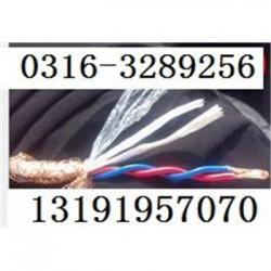 矿用通信电缆MHYV4x2x7/0.3,生产厂家