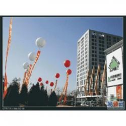 吉安县寿宴流程策划公司-江西生日寿宴活动