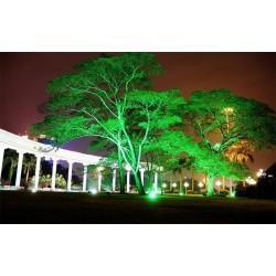 树木亮化设计制作 树木亮化装饰 树木亮化厂家
