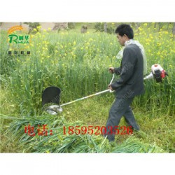 果园小型割草机 背负式两冲程打草机