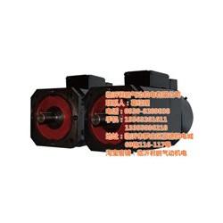 异步电动机价格|上海异步电动机|君鹏异步电