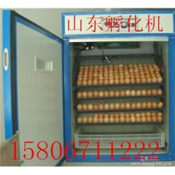 高青县鸡苗孵化机多少钱