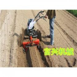 果园丘岭起垄田园管理机 自走型链条式施肥