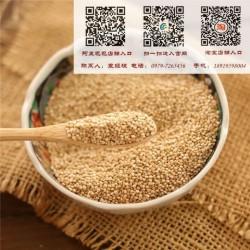 青海藜麦、【青海青藜】、青海藜麦源头批发