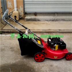绿化带草坪修剪机 小型草坪机