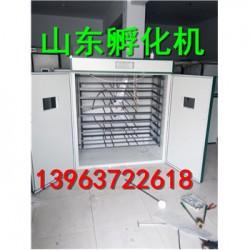 青川县500个鸡蛋孵化机多少钱
