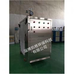供应淄博中型不锈钢电热蒸汽锅炉
