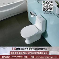 薛勇卫浴安装(图)、西安卫生间除臭治理、卫